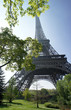 Eiffel tower and spring trees, Paris