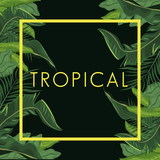 tropical leave palm tree poster vector illustration eps 10