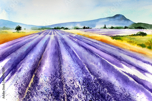 Handwork watercolor illustration. Provence France. .Landscape with lavender. © ketrinkin1