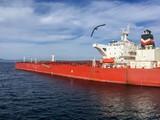 Gemi Taşımacılığı - 144980372
