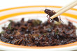 Eating fried cricket - eating insect concept