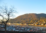 Heidelberg from the Hill2