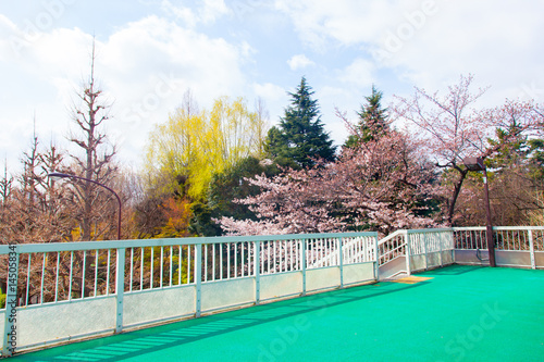 Tokyo bridge with colorful natural landscape | Pedestrian bridge at Shinanomachi Poster