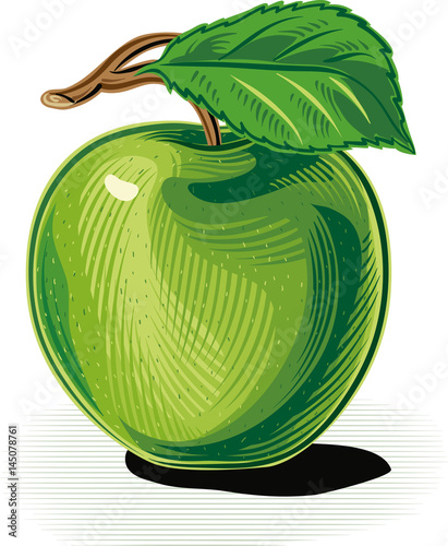 green apple, white background. - 145078761