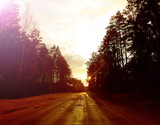 Spring landscape at evening with road.