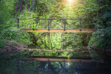 Bridge over a little river in the deep forest