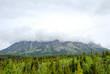 春�カナディアン・ロッキー マウント・ロブソン州立公園�景色(カナダ)