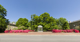 Panorama of gorgeous deep pink azaleas in front of the old well