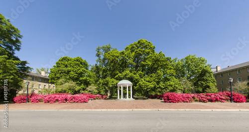Aluminium Azalea Panorama of gorgeous deep pink azaleas in front of the old well