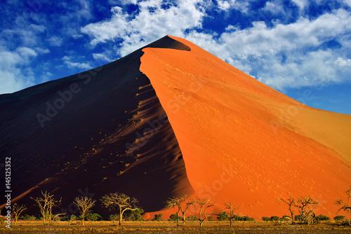 Papiers peints Orange eclat Sossusvlei, Namib Naukluft National Park, Namibia