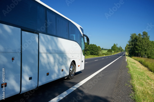 Fototapeta The white bus traveling on asphalt road lined avenue of trees in a rural landscape on a bright sunny day