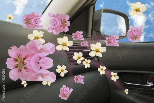 Plakat car perfume pink peach flowers