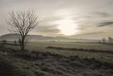 Paysage pris de bon matin avec le soleil au centre caché par les nuages, avec un arbre au premier plant et des champs en fond avec une légère brume