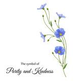 Реалистичные цветы льна, символ чистоты и доброты