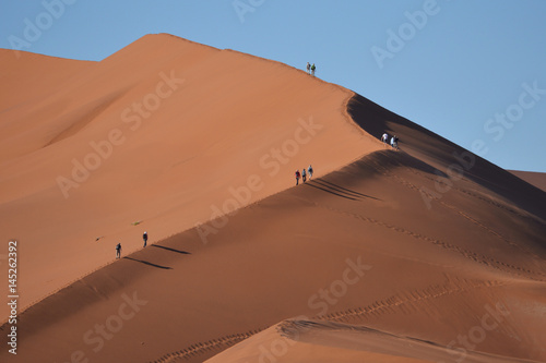 Dünen der Namib Poster