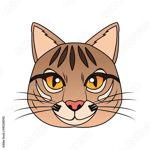 cat house pet icon image vector illustration design