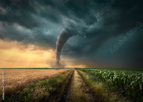 Tornado struck on agricultural fields at sunset