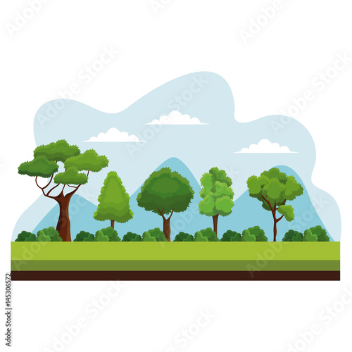tree nature ecology plant vector illustration eps 10