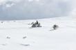 Man driving snowmobile in winter mountin