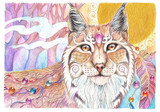 Watercolor drawing Lynx - 145347982