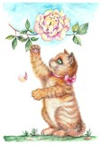 Cute kitten and peony bud, watercolor - 145348963