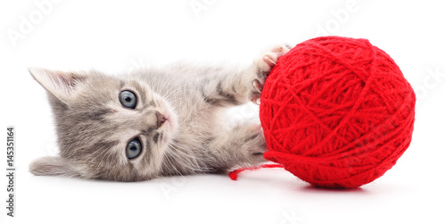 Poster Kitten with ball of yarn.