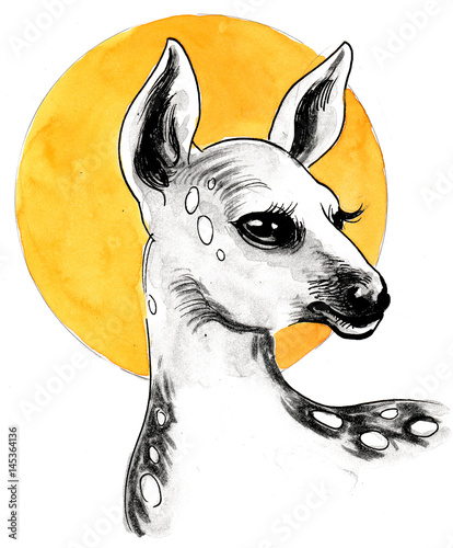 Watercolor sketch of a baby deer and the sun - 145364136