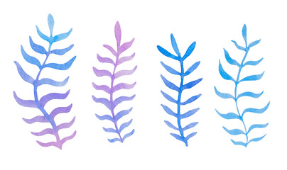 Hand drawn watercolor blue twig set on the white background
