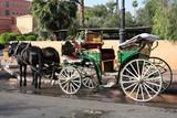 Horse Taxi in Marrakesh