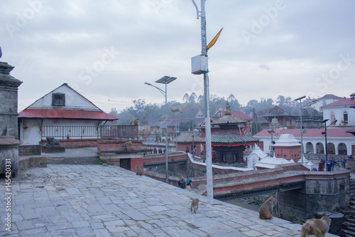 Pashupatinath Temple Nepal Poster