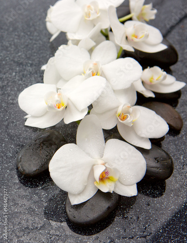 Spa stones and white orchid on gray background. © Swetlana Wall