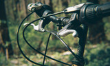 Elements of an old mountain bike