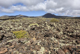 Interesting volcanic landscape of northern Lanzarote, Canary Islands, Spain, Europe