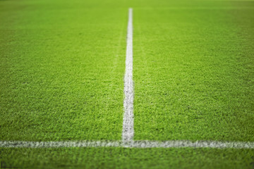 Football green field with white lines.