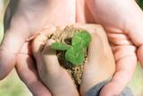 エコロジー 愛 誕生 平和 - 145516748