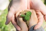 エコロジー 愛 誕生 平和 - 145516749
