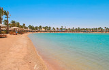 Golden beach in Hurghada, Egypt - 145538310