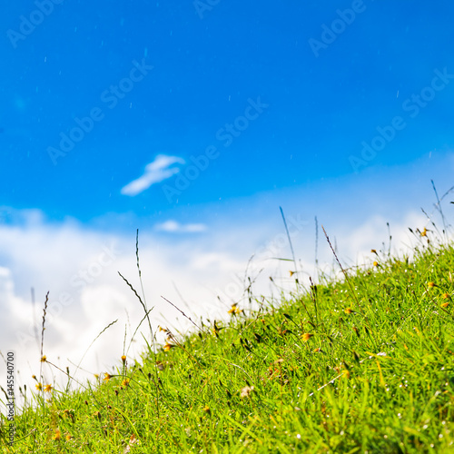Green grass lawn against blue sky with raindrops on a sunny summer day