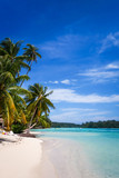 Paradise tropical beach and lagoon in Moorea Island - 145548778