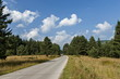 Majestic mountain top overgrown with coniferous forest, valley, glade and road, Rila mountain, Bulgaria