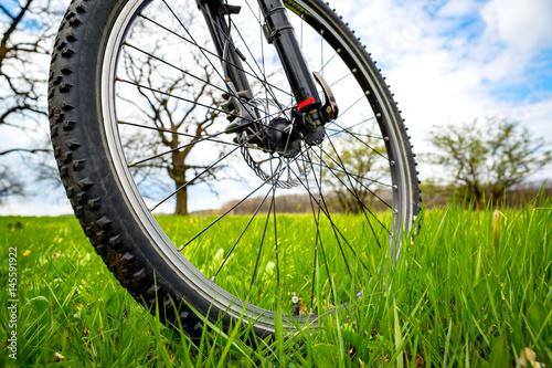 bike wheel on meadow