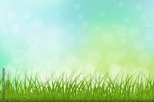Grünes Gras der hohen Qualität auf natutal Hintergrund, Vektorillustration.