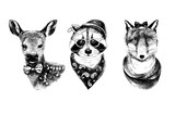 Dressed up hand drawn animals hipsters set. - 145624795