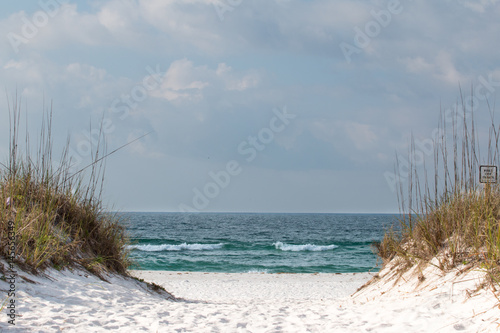 A path through the sand dunes leading to the beach. - 145656349