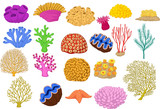 Set of colorful corals, clamp and starfish - 145659107
