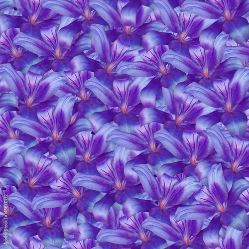 Foto op Canvas Violet Seamless infinite background floral. Purple-blue flowers lily. For design and printing. Background of natural flowers. Wall-papers.
