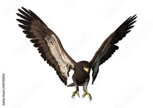 Plexiglas Eagle 3D Rendering Eagle on White