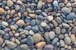 Quadro Small sea stones, gravel. Background. Textures