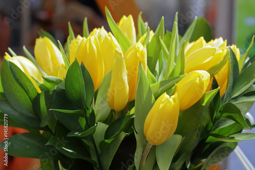 Flower bouquet from yellow tulips
