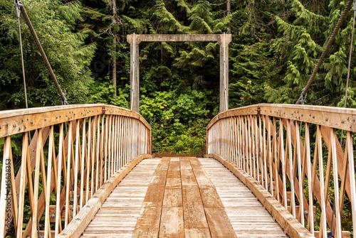 Pack Bridge In Wilderness